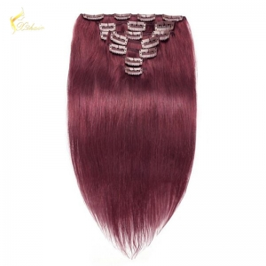 8A grade Wholesale Price 100% remy Indian Straight Wave 99j# Clip in hair extension