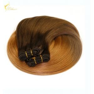 Top quality 100% brazilian remy hair two tone braiding hair weft