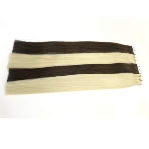 Wholesale 100% human hair Brazilian Cheap Tape in Hair Extensions