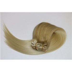 Wholesale high quality double drawn thick remy full head lace weft clip in human hair extension