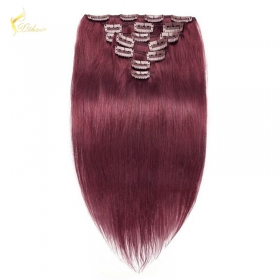 China 8A grade Wholesale Price 100% remy Indian Straight Wave 99j# Clip in hair extension on sales